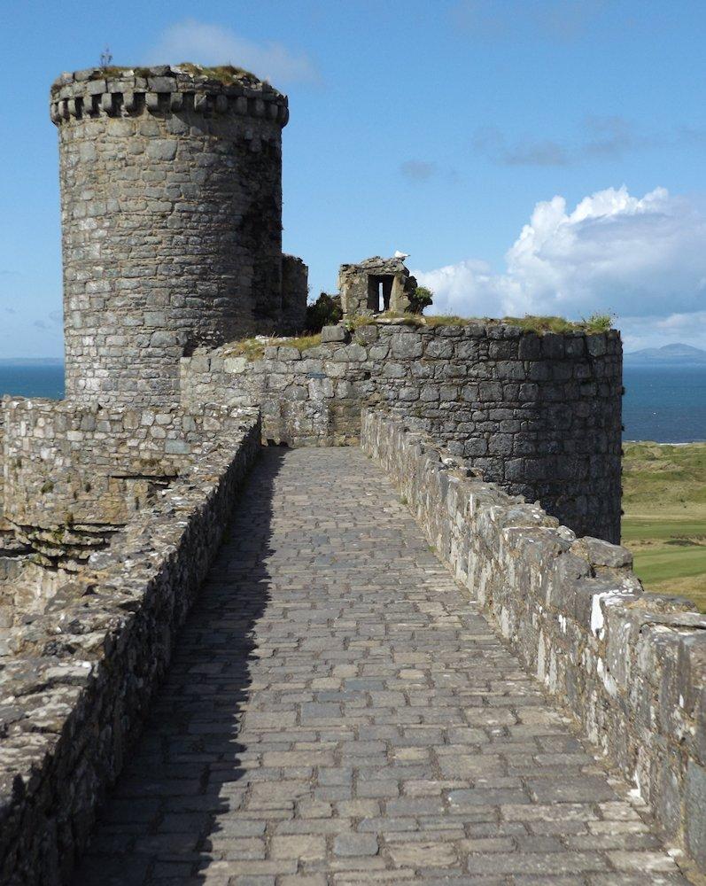 ハーレフ城の画像 p1_15